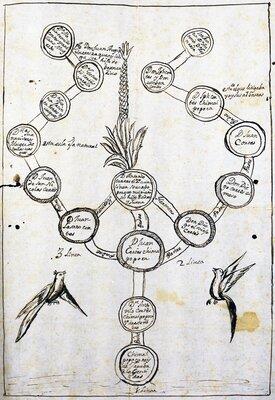 Árbol genealógico de Chimalpopoca, Rey de Tacuba