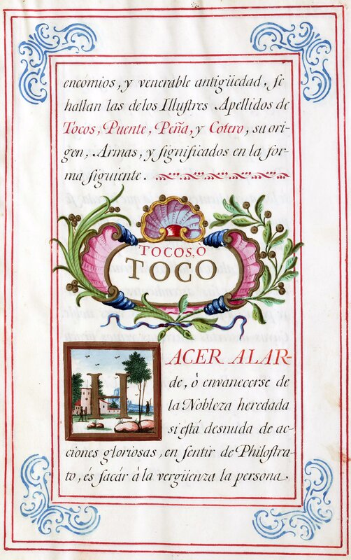 Historia del apellido Tocos